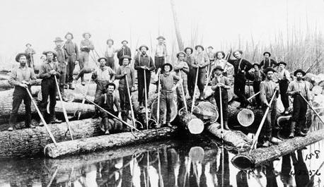 Men guiding logs down a river in Michigan in 1901